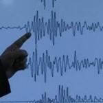 Tërmet i fuqishëm në ShBA
