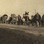 Gjenocidi grek ndaj çamëve