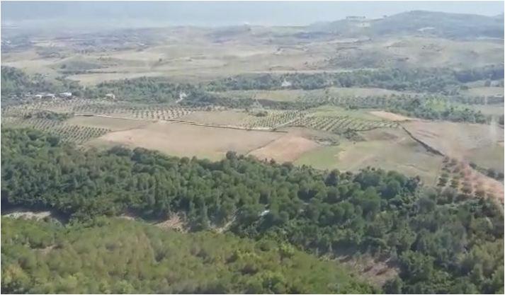RAPORTI SEKRET/ 363 zona me hashash në Shqipëri. Parcelat kontrollohen me dron