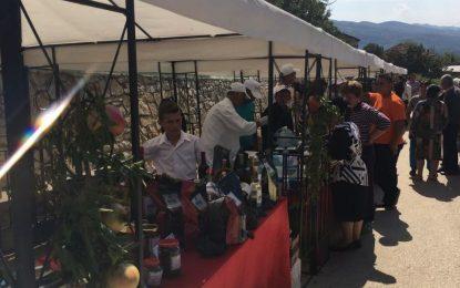 Festa e Roshnikut/Promovohet turizmi malor në zonën e Malit të Tomorit