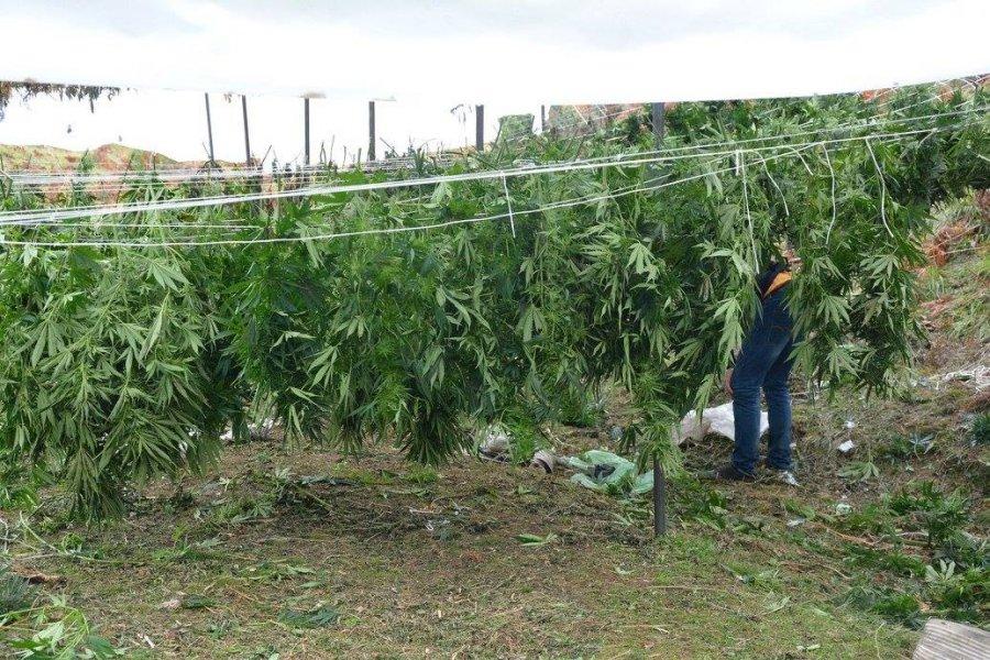 90% të parave të pista të drogës pastrohen në sektorin e ndërtimit