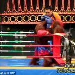 VIDEO/ Në Bangkok zhvillojnë ndeshje boksi edhe…majmunët