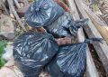 Tjetër magazinë droge në Mirditë, arrestohet 30-vjeçari me 19 kg kanabis