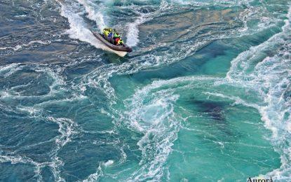 FOTO/ Saltstraumen, njihuni me ngushticën me rrjedhën më të shpejtë të ujit në botë