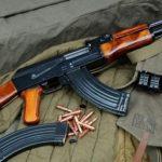 Plagoset me armë aktivisti i LSI