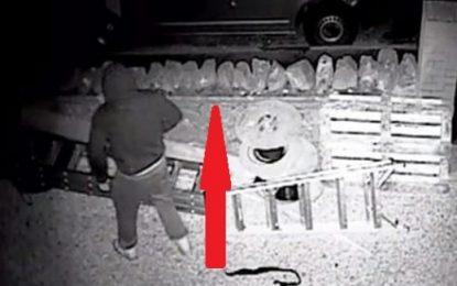 Hajdutët i hyjnë në shtëpi dhe vjedhin një shumë rekord në Memaliaj