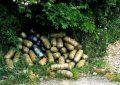 FOTO/ Kapen 55 kg kanabis në Lin të Pogradecit