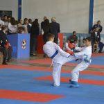 Kamza Karate Open 2017, Turneu Ndërkombëtar në palestrën  e Bathores me pjesëmarrjen e sportistëve nga 5 shtete. Ja fituesit