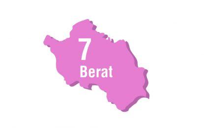 Surpriza në Berat, ja deputetët që futen në Kuvend dhe ata që mbeten jashtë