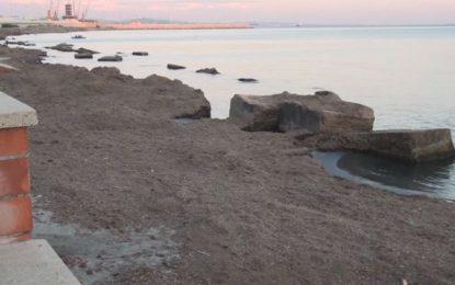 """""""Taulantia"""" në Durrës nuk meriton të quhet shëtitore"""