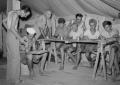 Lufta e Dytë Botërore, kur Siria dhe Egjipti prisnin europianët (Foto)
