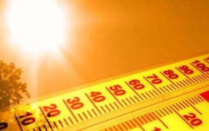 Tmerr nga rritja e temperaturave