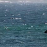 Tragjedi në brigjet shqiptare. 4 të mbytur në 1 ditë. Ku janë rojet e plazhit?
