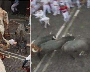 Festivali i demave në Spanjë, njerëzit bëhen 'copë' nga kafshët e tërbuara (VIDEO)