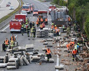 Autostrada bllokohet nga mijëra pula (Foto+Video)