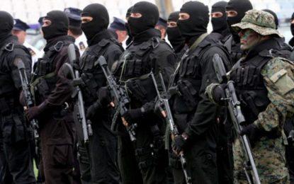 Qeveria kosovare, me strategji të re kundër terrorizmit (Video)