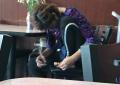 Punonjësja pret thonjtë në mes të restorantit, tmerrohen klientët