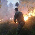 Situatë e rëndë nga zjarret në Lezhë, Rama poston fotot