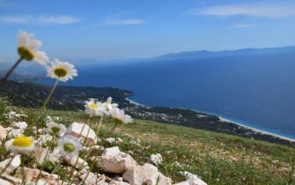 Skema e grabitjes dhe e tjetërsimit të 342 ha tokë në bregdetin e Vlorës