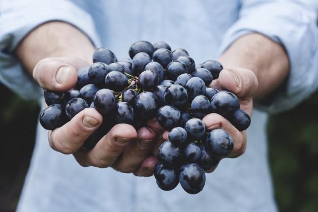 Konsumimi i rrushit mbron shikimin