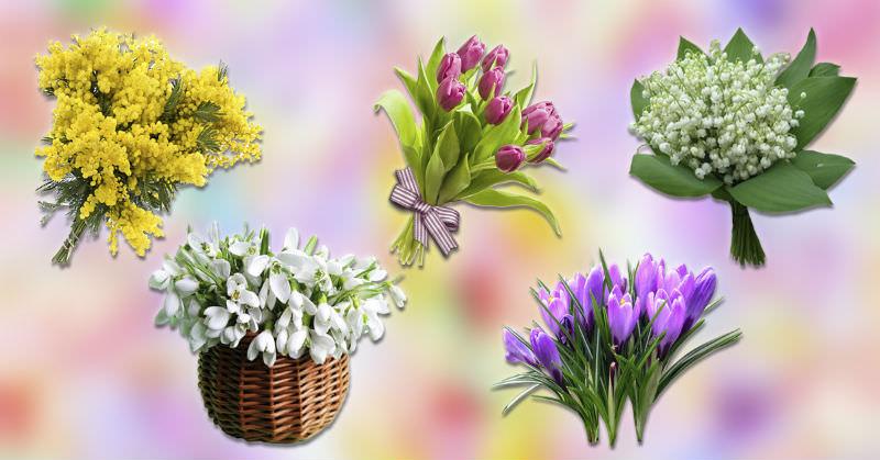 zgjidh-nje-buqete-dhe-zbulo-se-cfare-do-te-te-sjelle-pranvera
