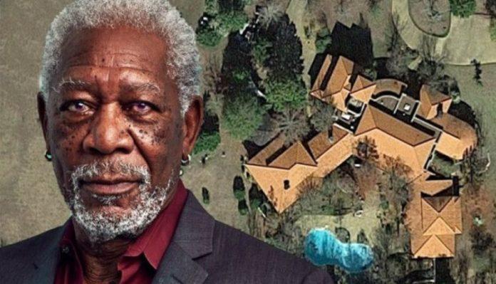 Aktori i famshëm shndërron fermën e tij në parajsë bletësh